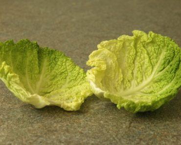 Капустный лист при варикозе