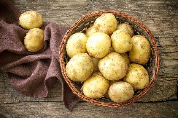 Картофель при варикозе
