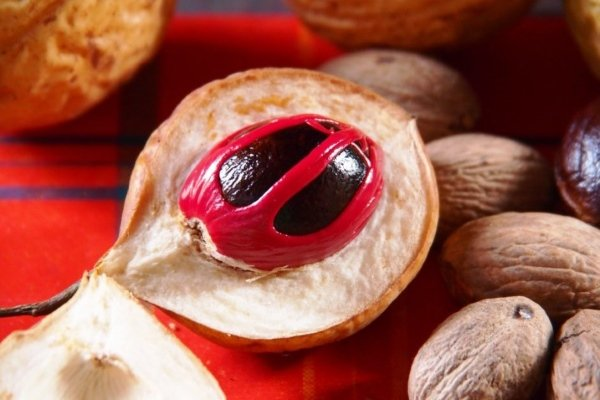 Свежий плод для настойки