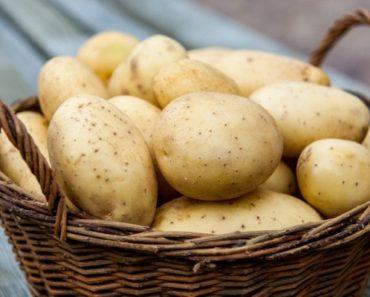 Картофель при геморрое