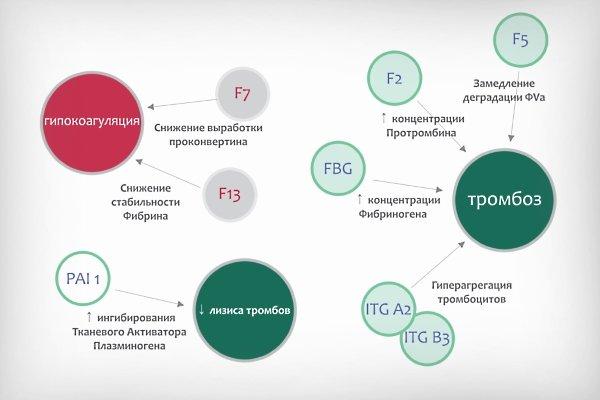Расшифровка тромбофилии